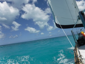 1-sail-to-barbuda